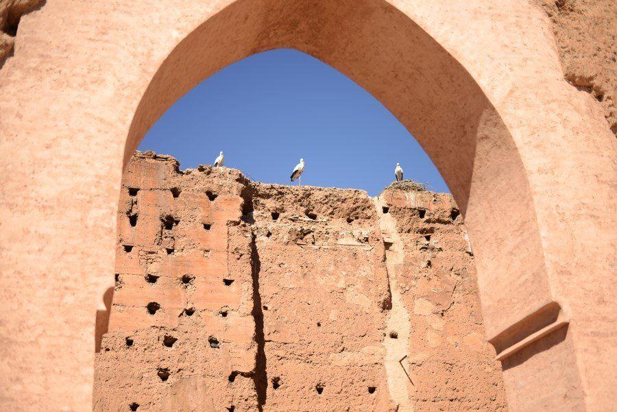 El Badii Palace (1)
