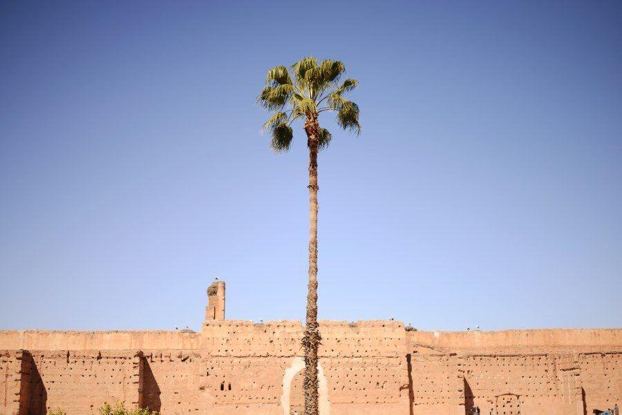 El Badii Palace (4)