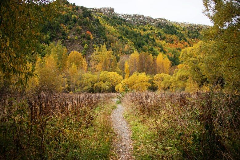ARROWTOWN_THE_WANDERING_LENS (1)