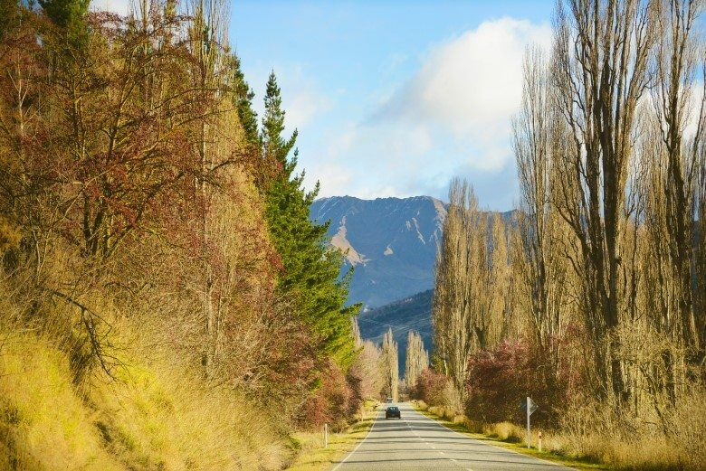 MALAGHANS_RD_QUEENSTOWN_THE_WANDERING_LENS (1)