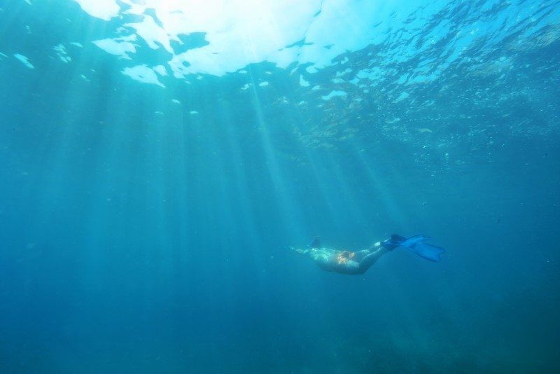Underwater Photography Composition by The Wandering Lens