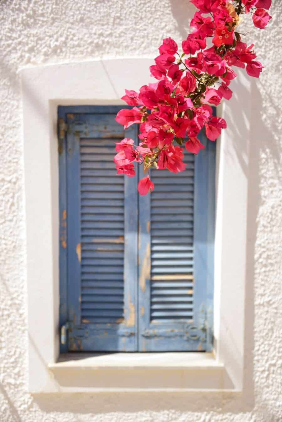 paros-island-greek-islands-by-the-wandering-lens-11