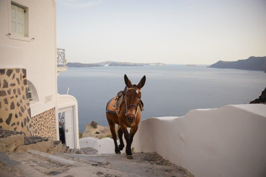 Santorini Photo Locations by The Wandering Lens www.thewanderinglens.com