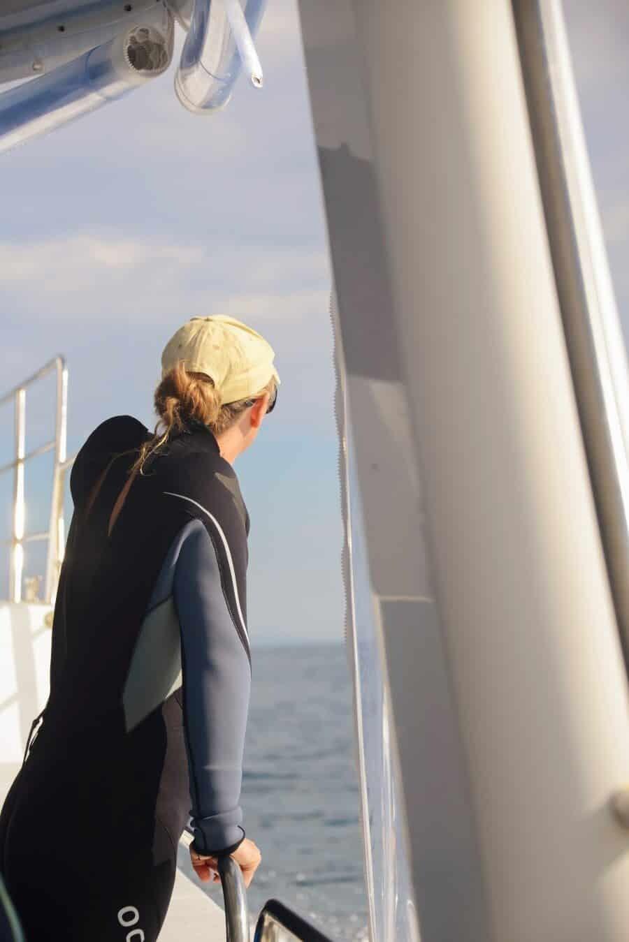 sunshine-coast-whale-swim-queensland-australia-03