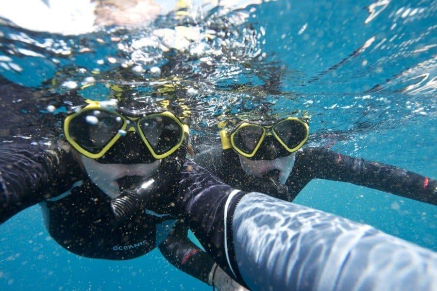 sunshine-coast-whale-swim-by-the-wandering-lens-sunreef-mooloolaba-9
