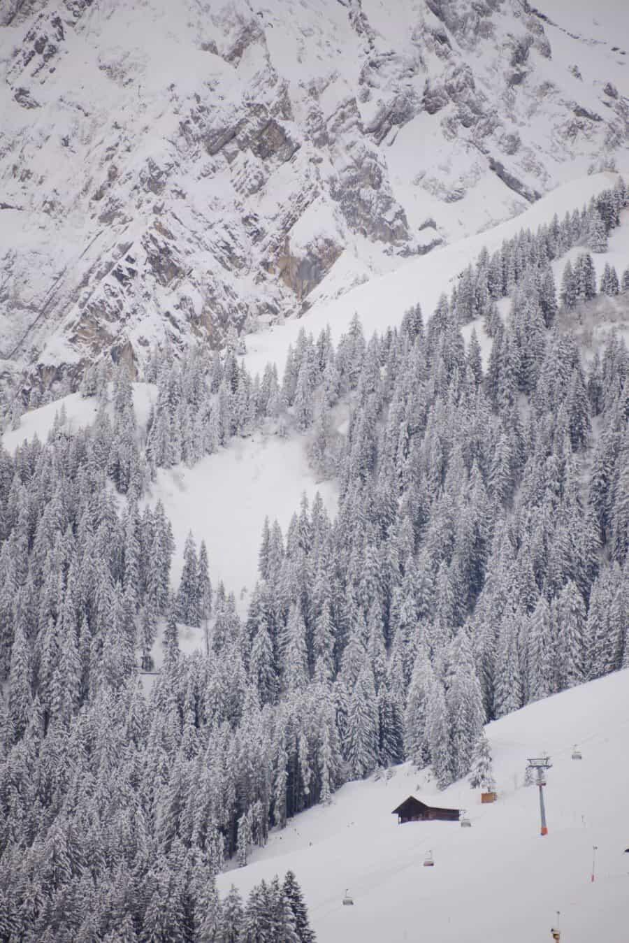 Adelboden Switzerland by The Wandering Lens (12)