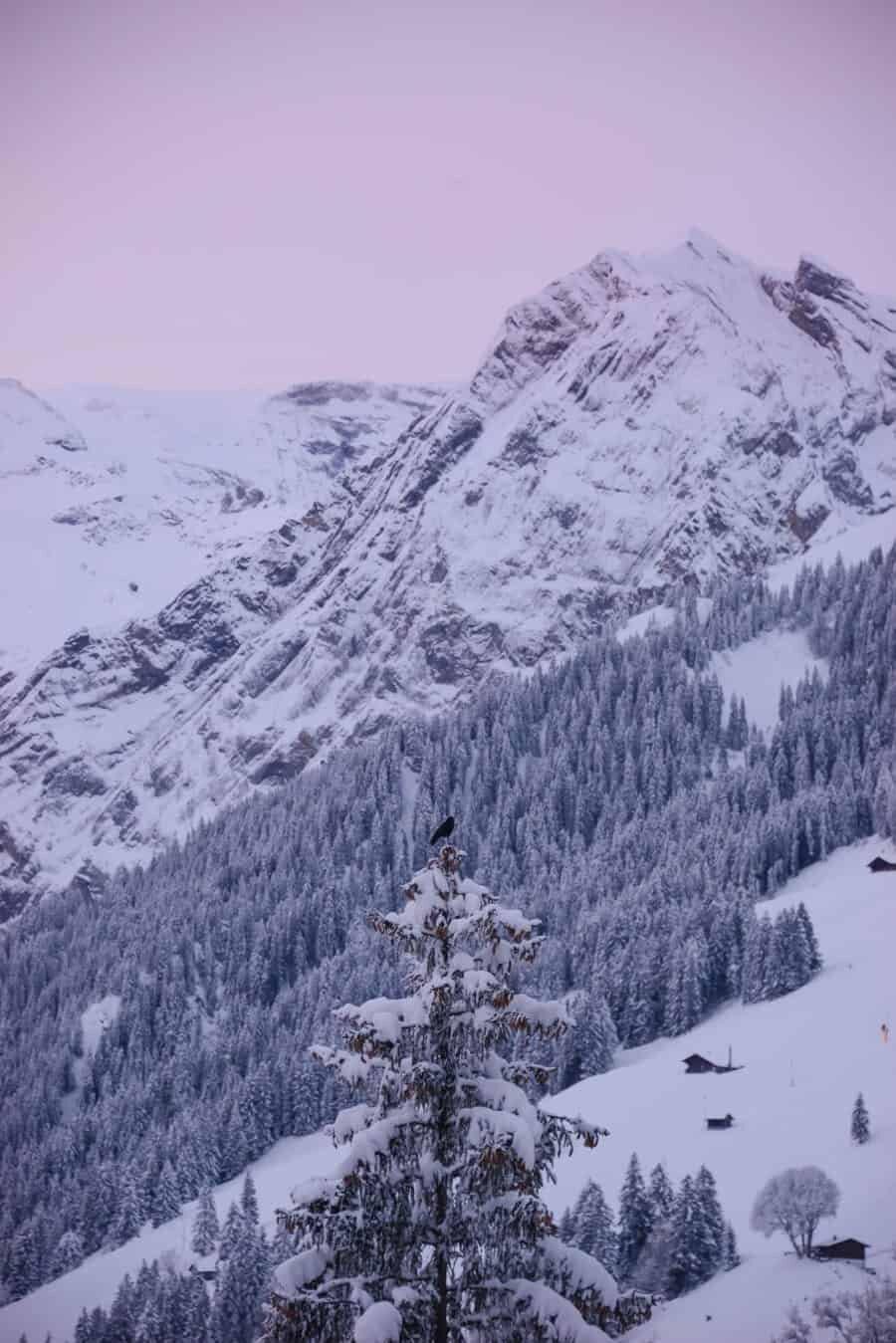 Adelboden Switzerland by The Wandering Lens (14)