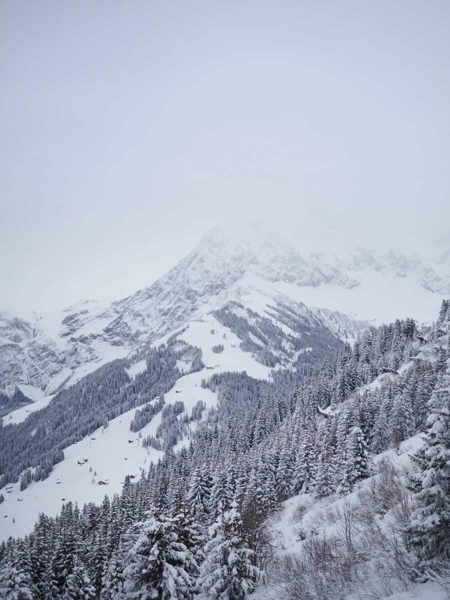 Adelboden Switzerland by The Wandering Lens (20)