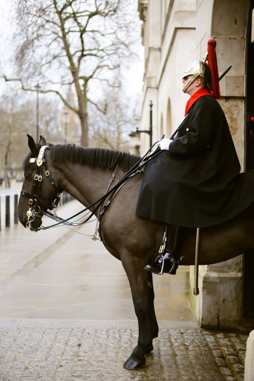 The Royal Horse Guard
