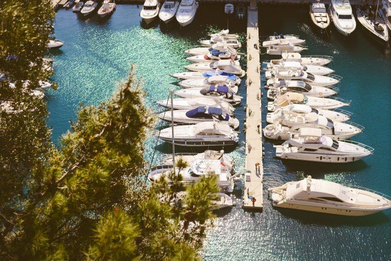 Monaco, The Wandering Lens