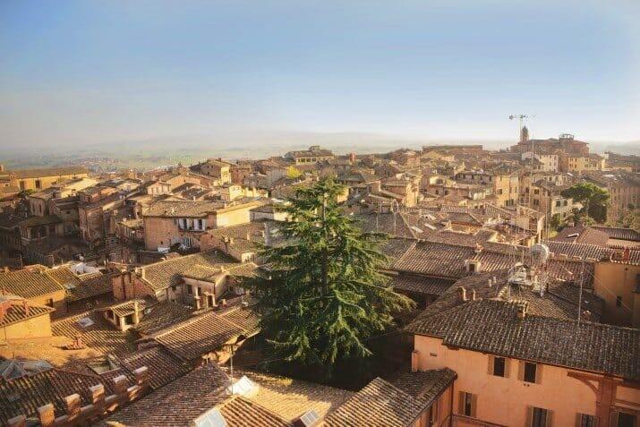 Siena, Italy13