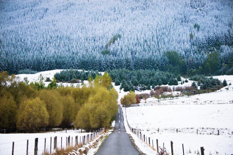 MALAGHANS_RD_QUEENSTOWN_THE_WANDERING_LENS (2)