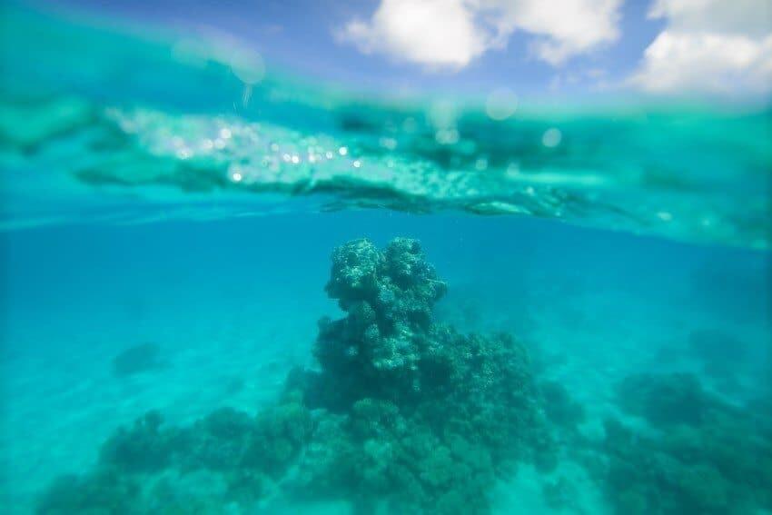 Aitutaki_Cook_Islands05