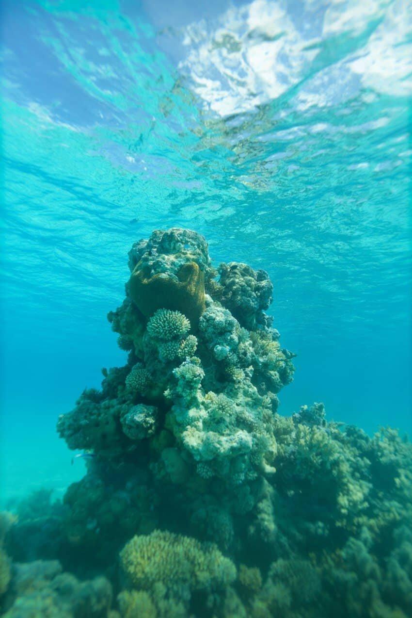 Aitutaki_Cook_Islands07