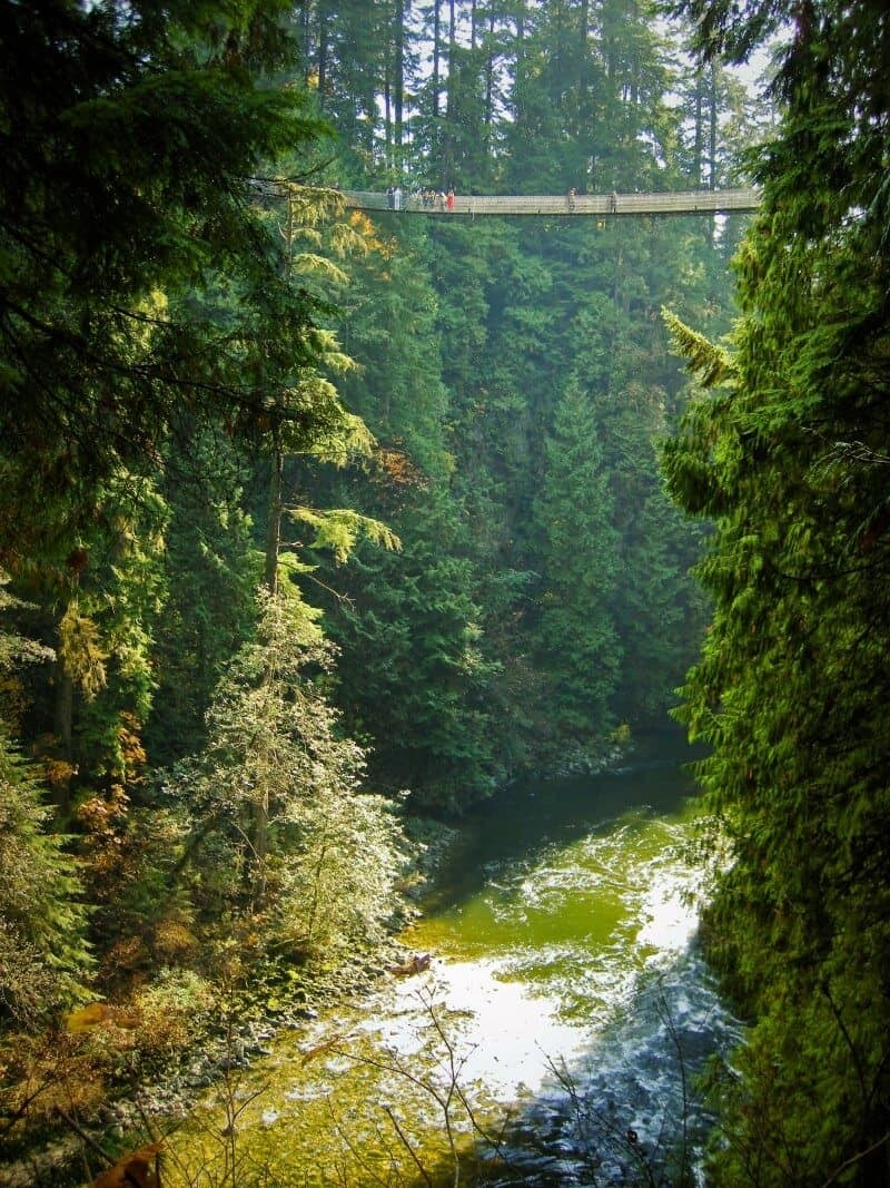 Capilano, Vancouver Canada by The Wandering Lens www.thewanderinglens.com
