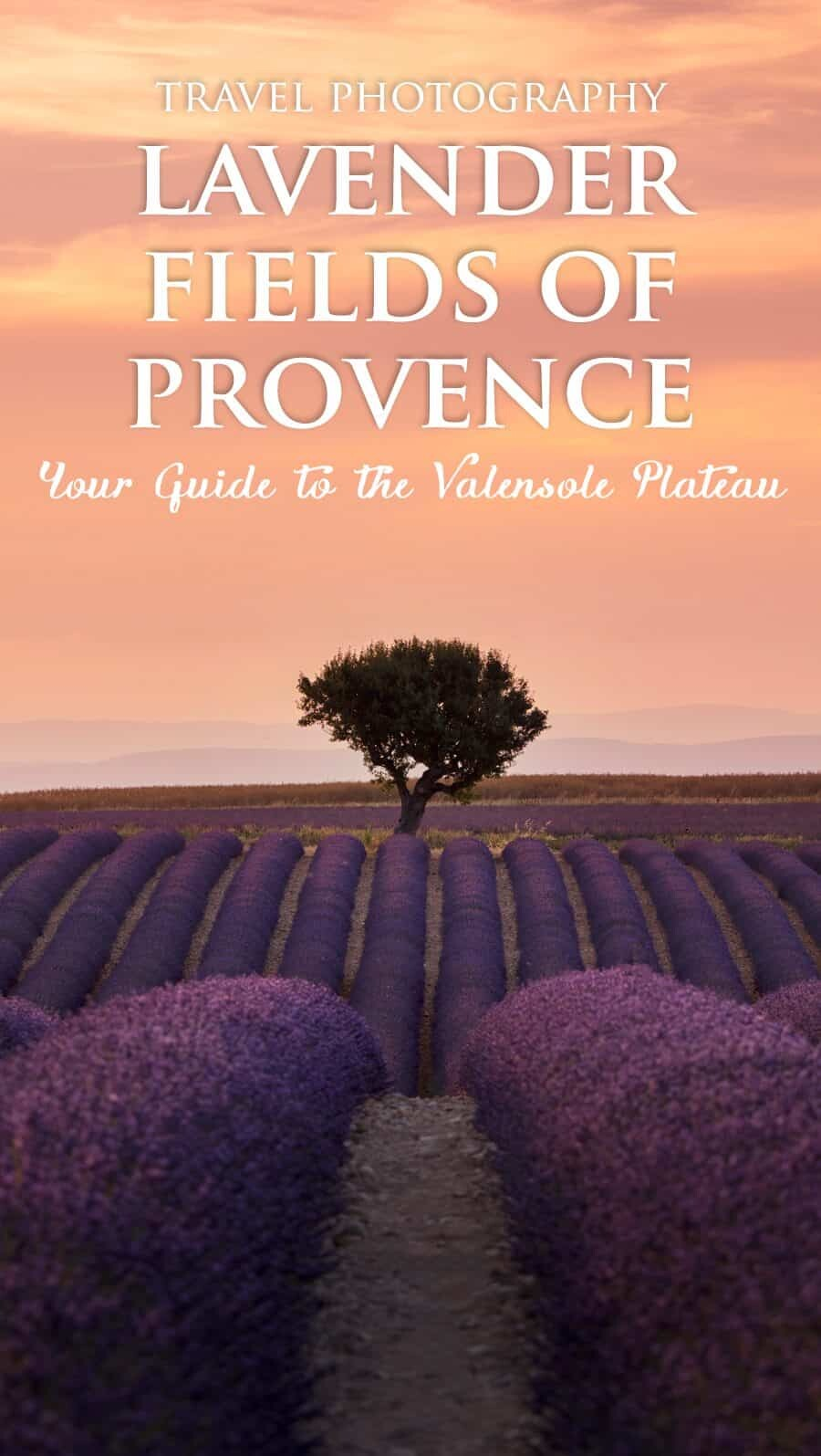 Lavender Fields France Map.Provence Lavender Fields A Photographer S Guide To Valensole France