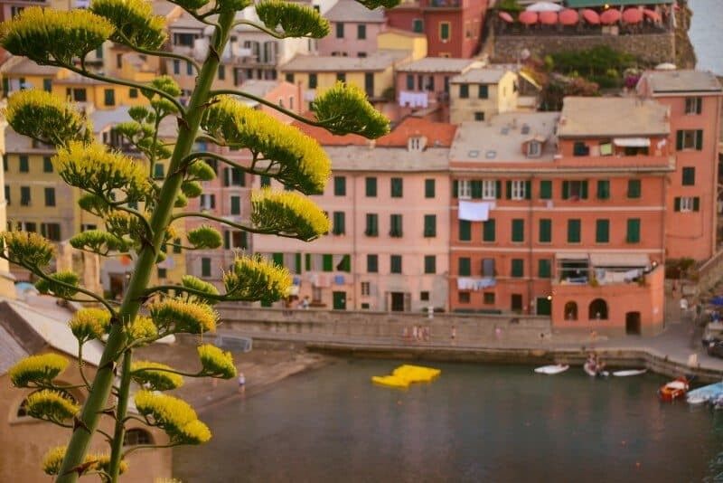VERNAZZA_THE WANDERING LENS08