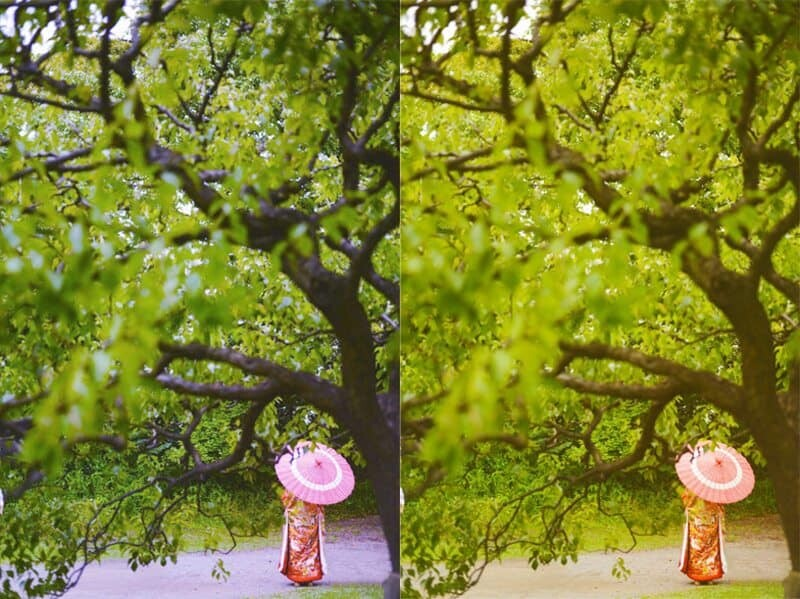The image on the left is taken using'Auto' white balance....on the right is'Cloudy' white balance, you can see the vibrancy and warmth changes quite intensely.