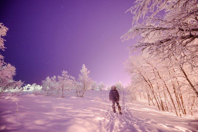 The Wandering Lens, Camp Ripan Kiruna Sweden review