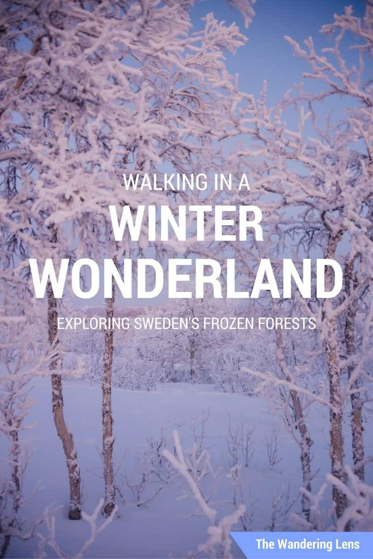 Walking in a Winter Wonderland in Sweden by The Wandering Lens
