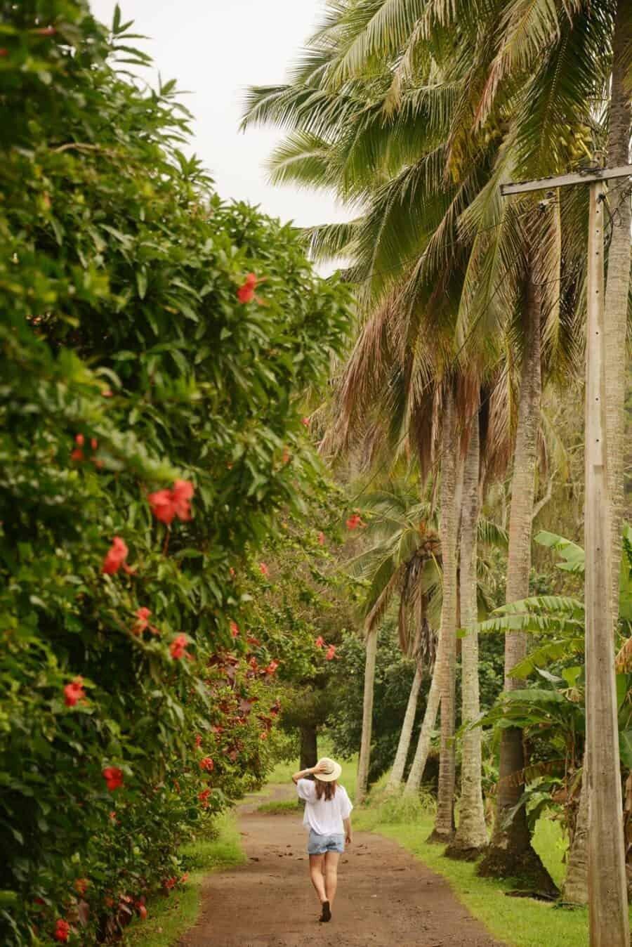 ikurangi-eco-retreat-rarotonga-cook-islands-30