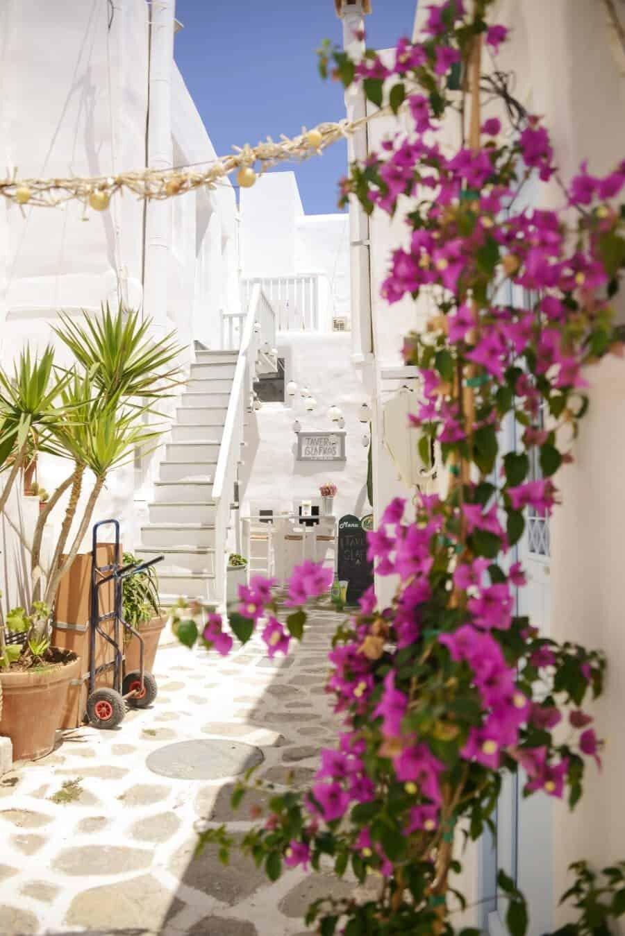 paros-island-greek-islands-by-the-wandering-lens-05