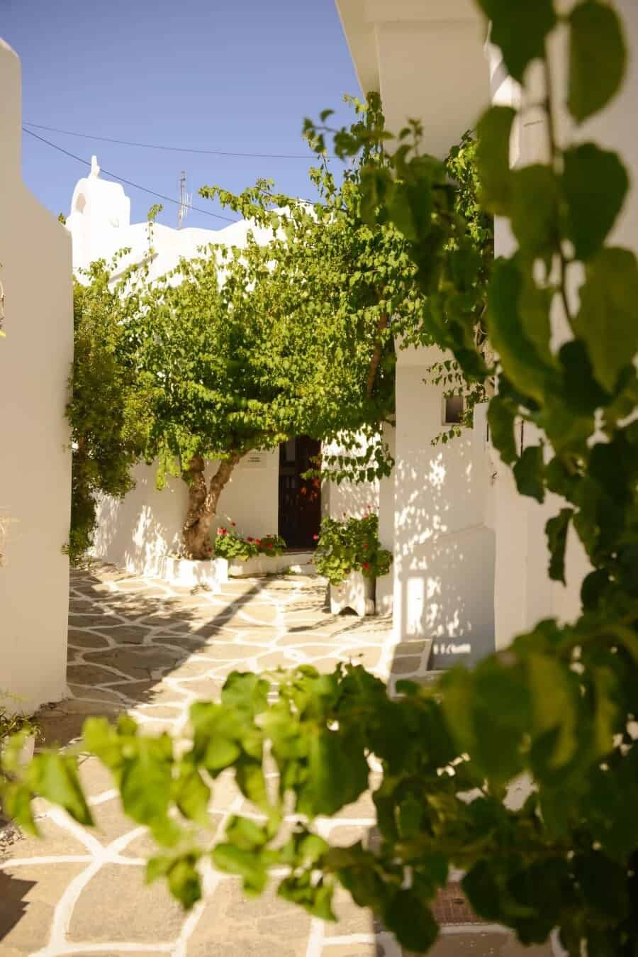 paros-island-greek-islands-by-the-wandering-lens-07