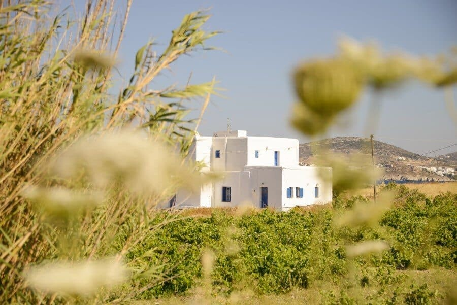paros-island-greek-islands-by-the-wandering-lens-21