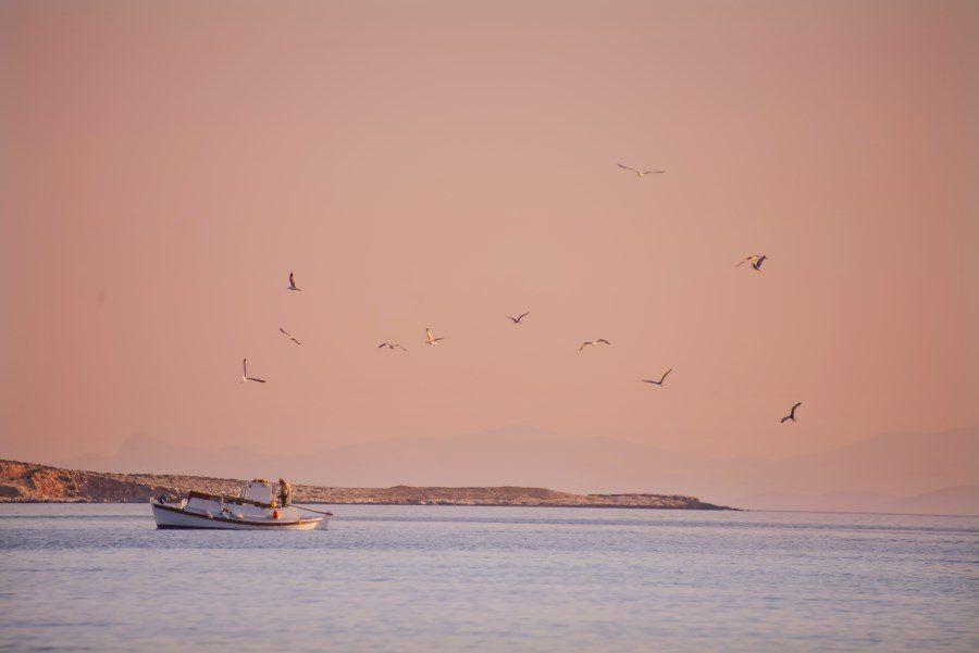 paros-island-greek-islands-by-the-wandering-lens-37