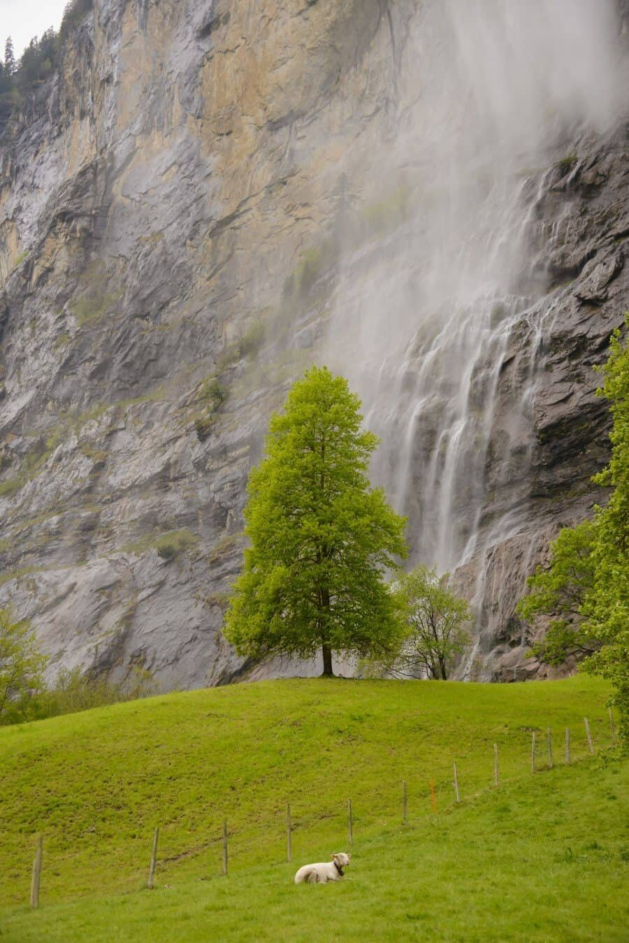 jungfrau-travel-guide-wengen-lauterbrunnen-and-grindelwald-by-the-wandering-lens-54