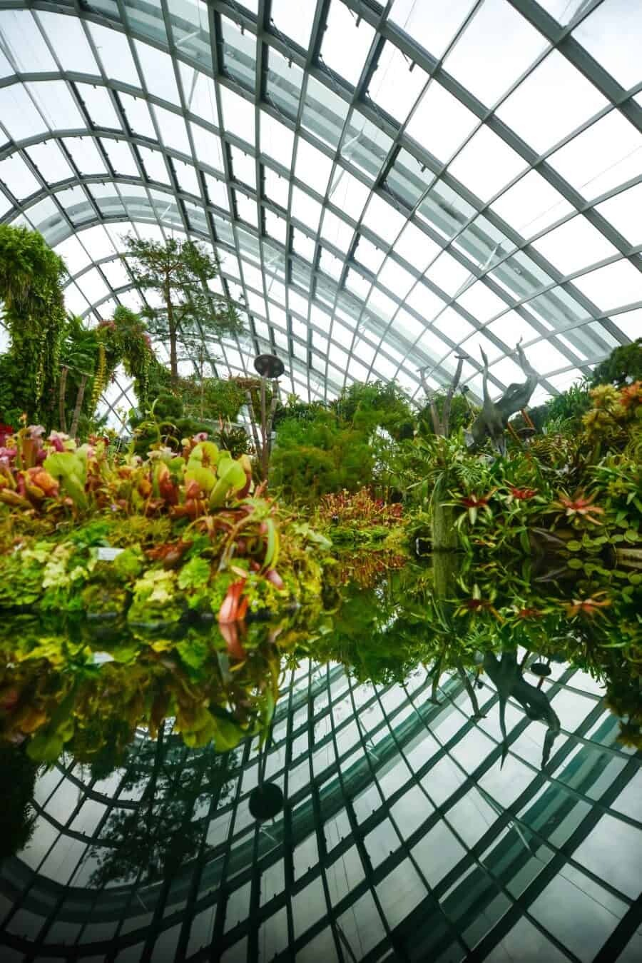 Singapore Photography Locations, Cloud Forest by The Wandering Lens photographer Lisa Michele Burns