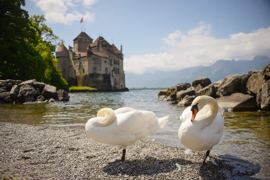 Chateau de Chillon, Switzerland Travel by The Wandering Lens 10