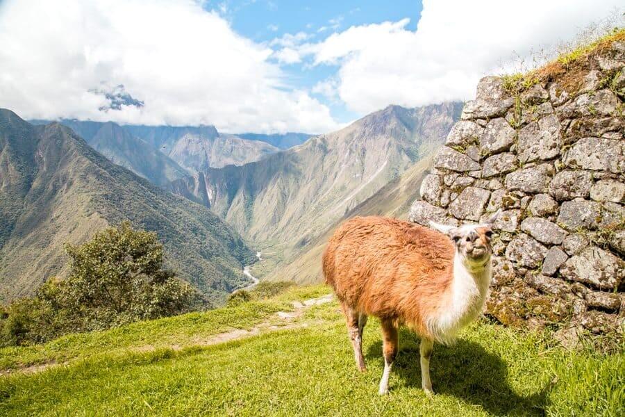 Machu Picchu Photography Locations