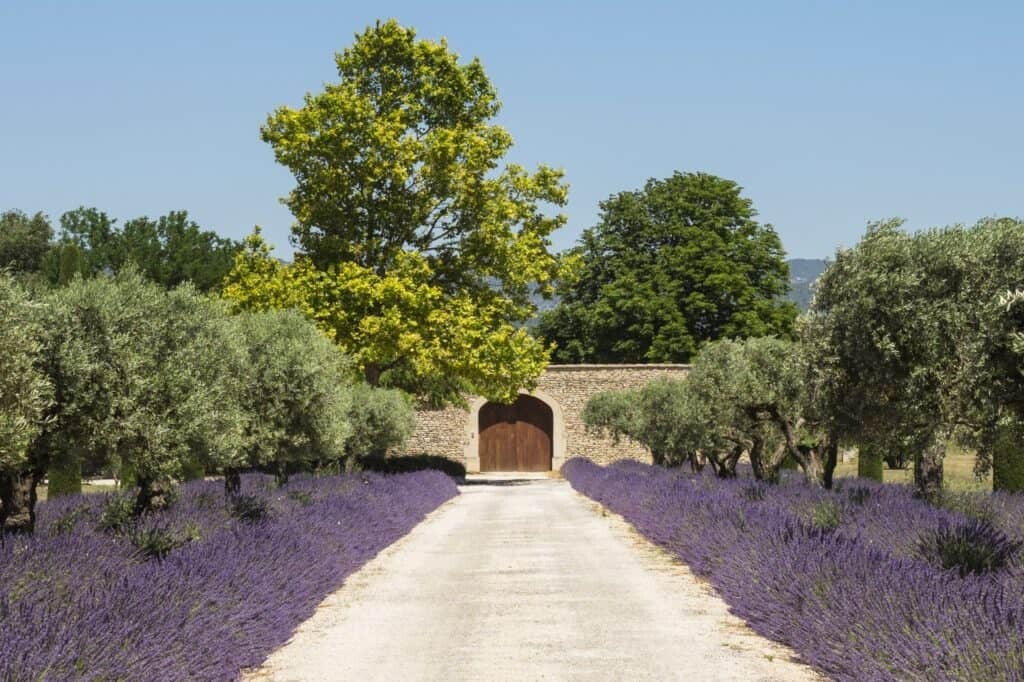 Renting a villa in Provence, France