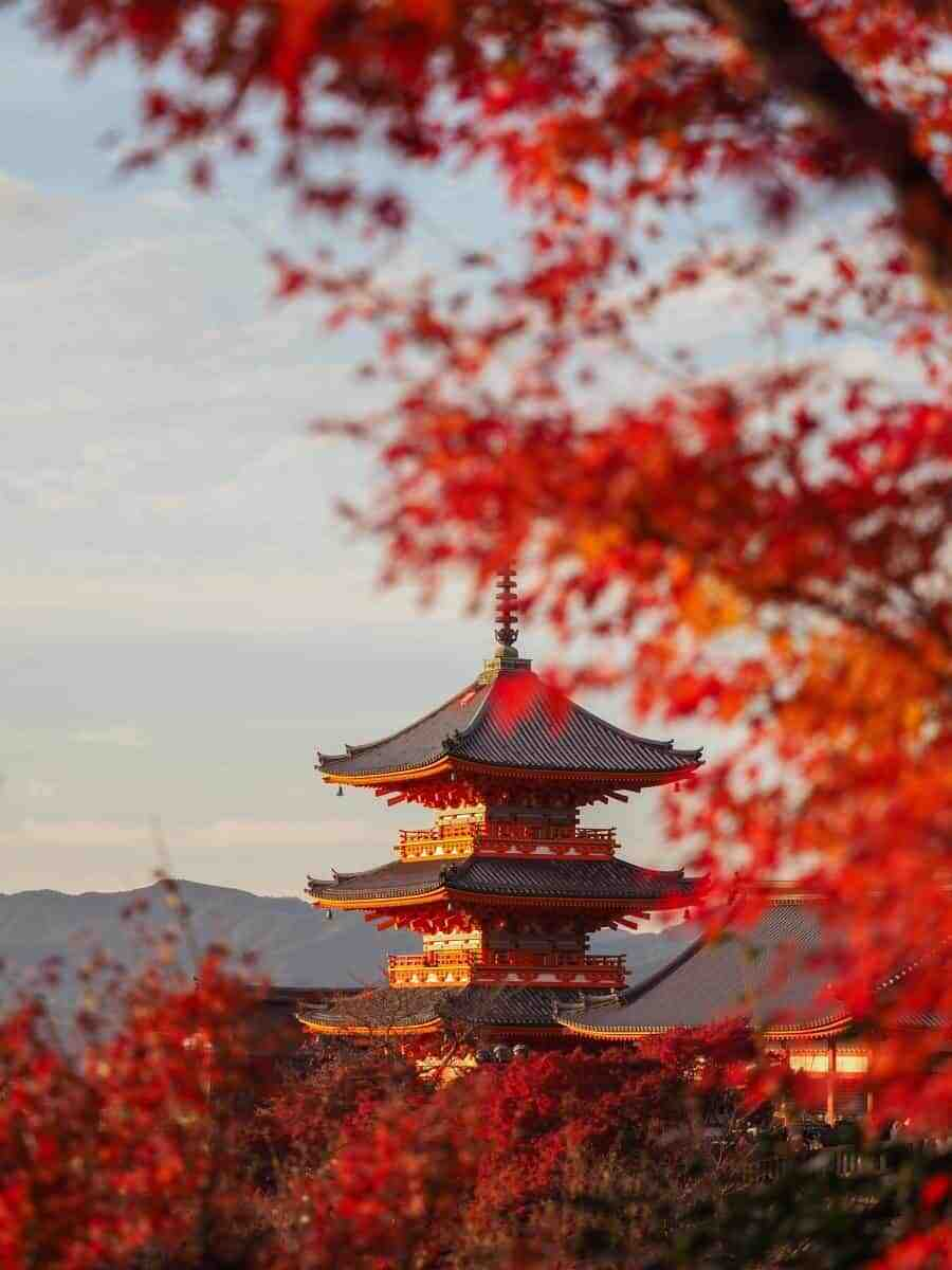 Autumn In Japan Travel And Photography Tips For Kyoto