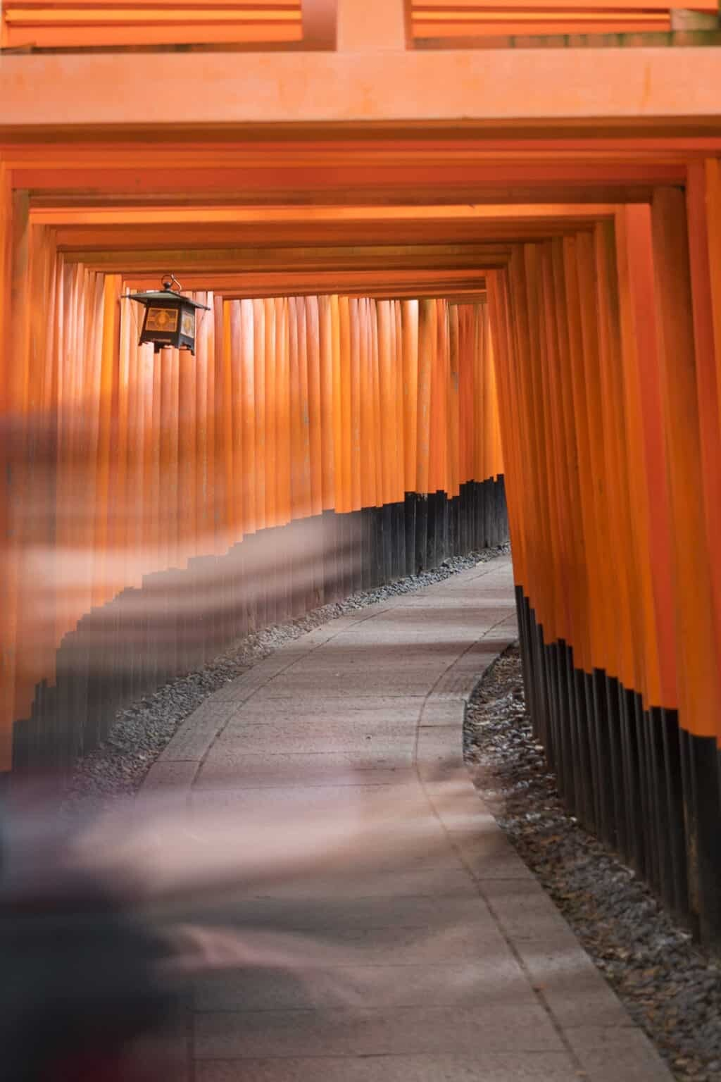 Kyoto photography locations and travel guide to Kyoto by The Wandering Lens