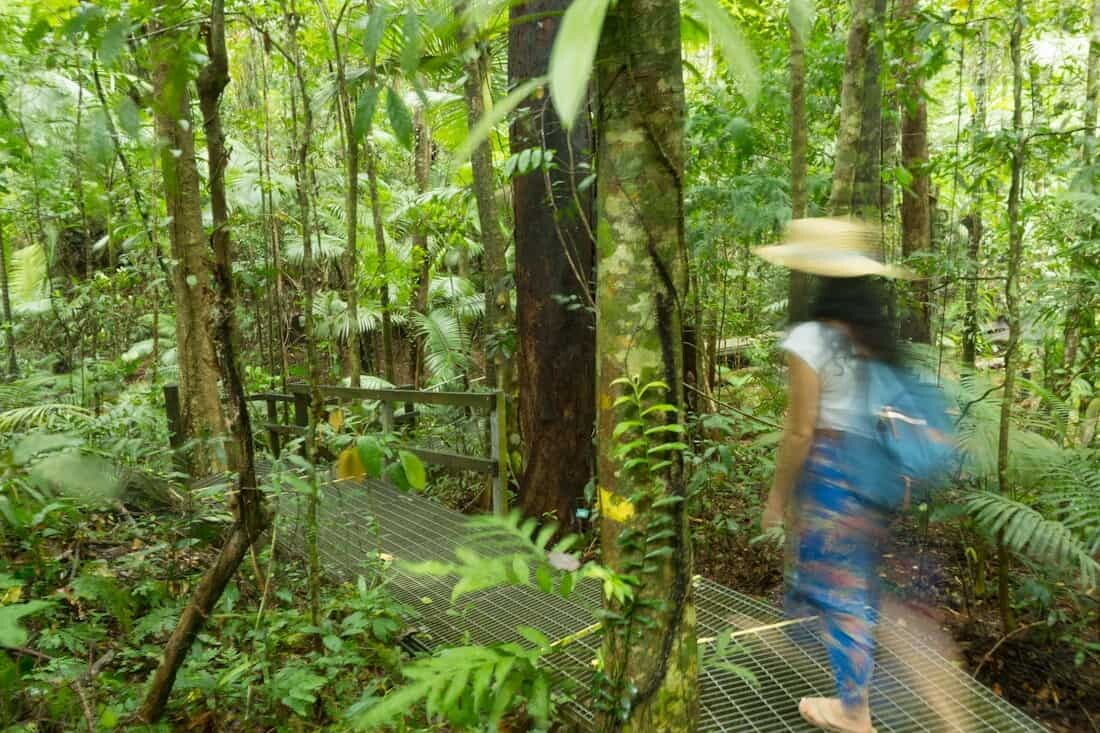 Daintree Rainforest, Tropical North Queensland Photography Locations
