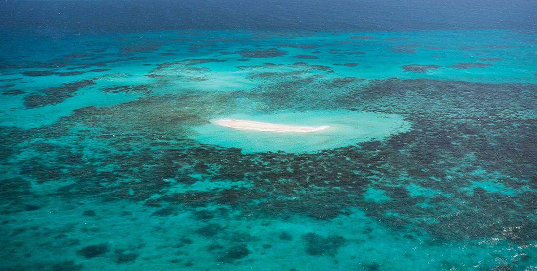 10 Photogenic Experiences in Tropical North Queensland