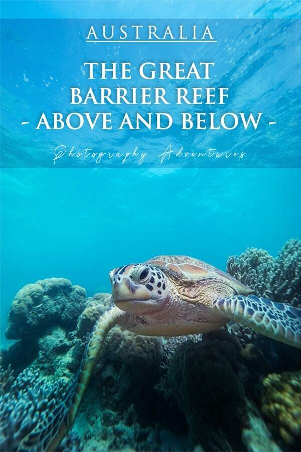 Great Barrier Reef Day Trips and Photograpyh Experiences above and below the water