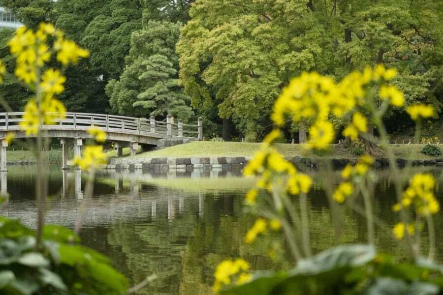 Hama-rikyu Gardens Tokyo Photography Locations - A Photographer's Guide to Photo Spots in Tokyo