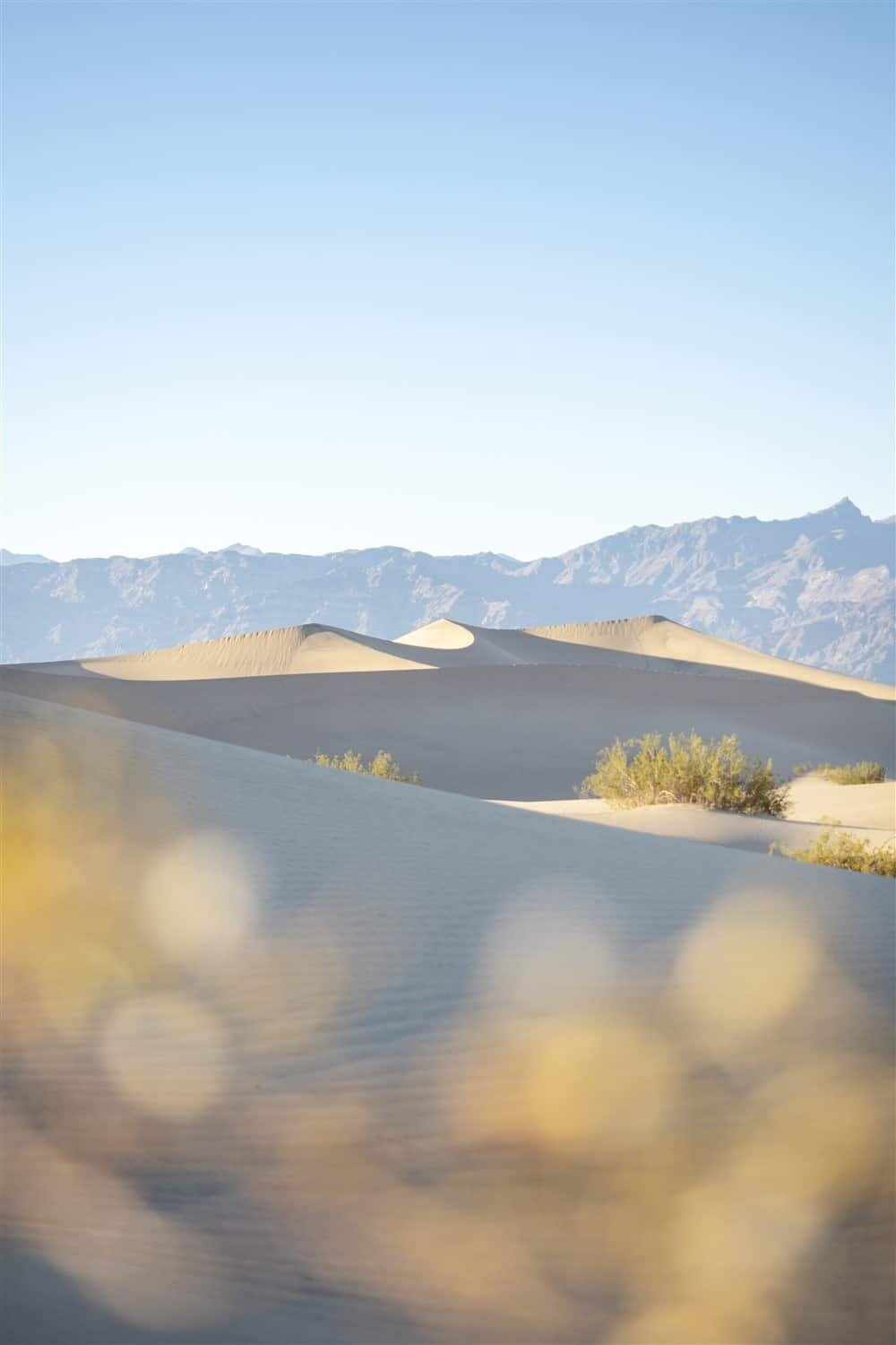 Mesquite Flat Sand Dunes - Death Valley National Park