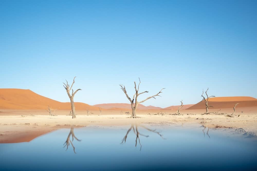 Deadvlei Namibie avec Wilderness Safaris