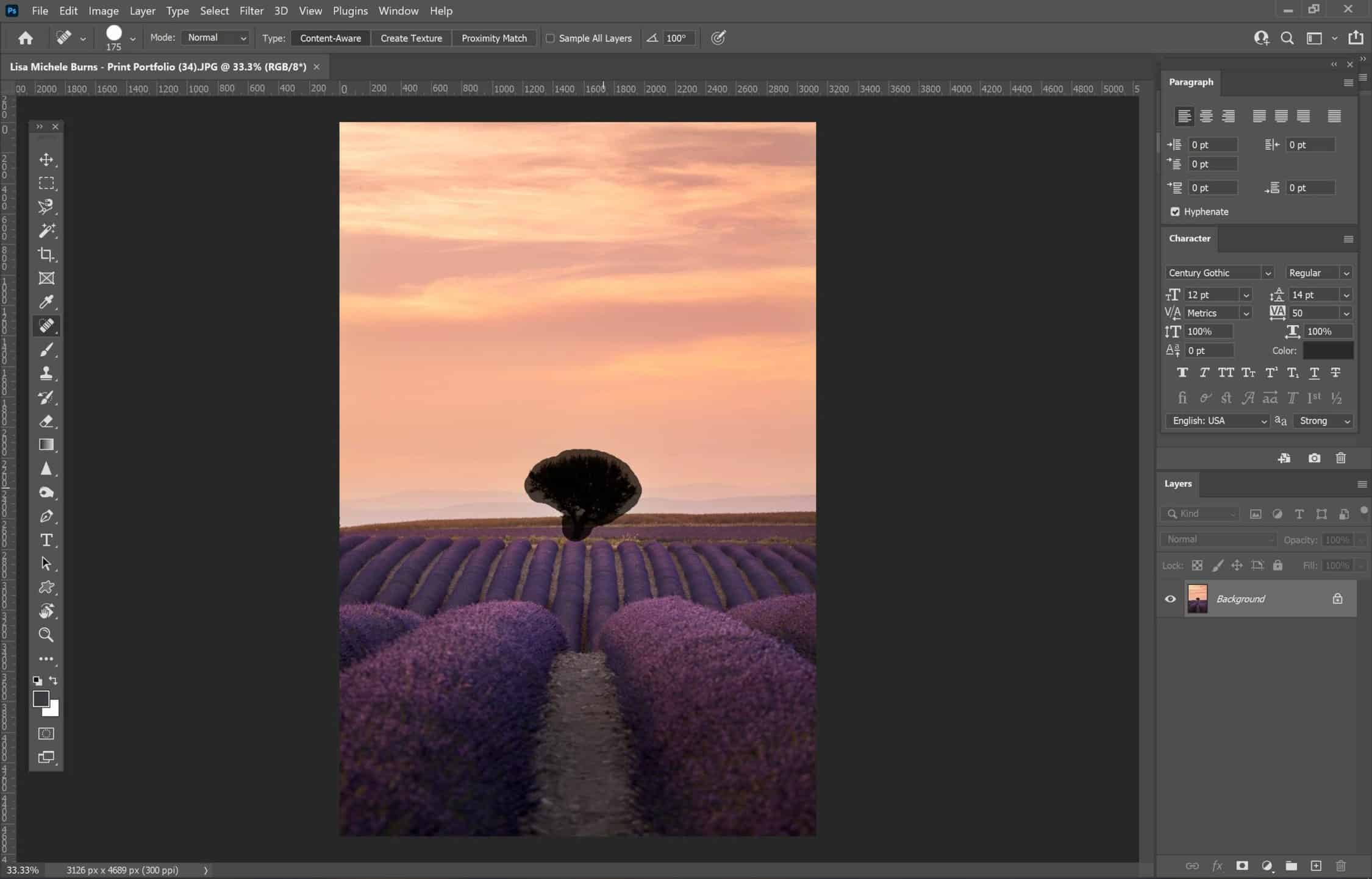 Photo Editing: How to Remove Subjects from Photos
